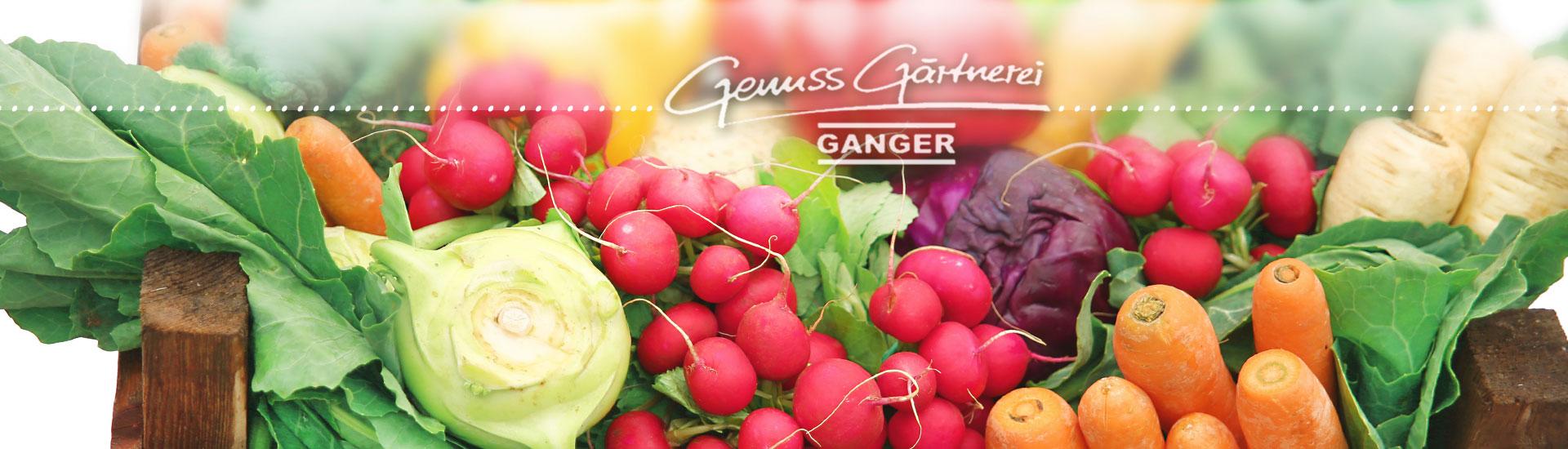 Gärtnerei Ganger | Gemüse