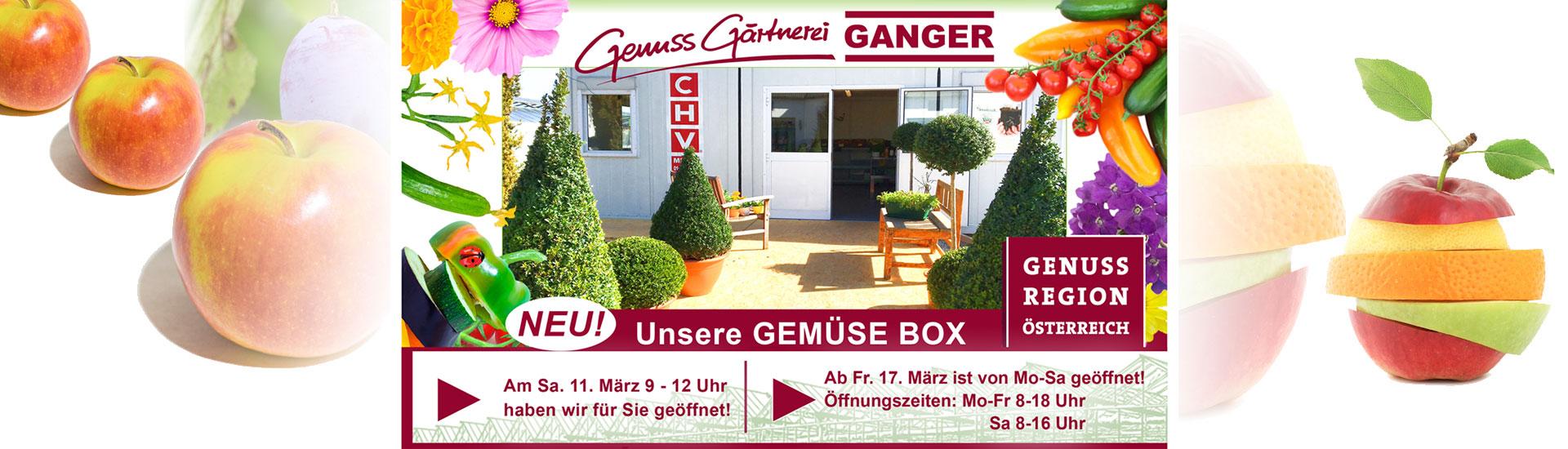 Gärtnerei Ganger | NEU! Unsere Gemüsebox!