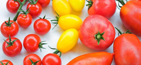 Gärtnerei Ganger | Unser Angebot - Gemüse